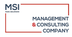 MSI Verwaltungsgesellschaft mbH | management & consulting